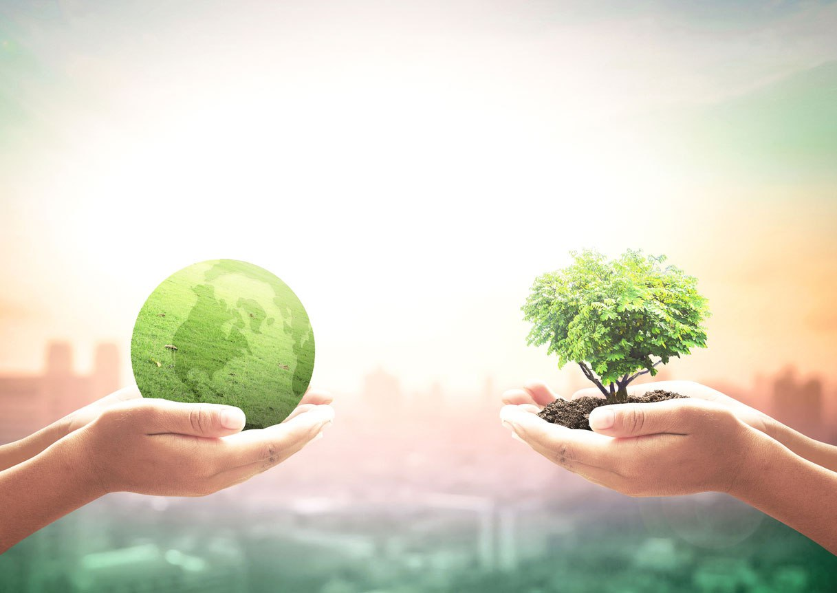 Reflections on Leadership: Stewardship- hands with tree and earth