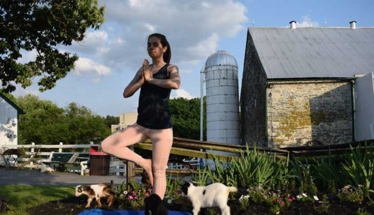 Lancaster Top Place to Retire- Amish Farm and House Goat Yoga