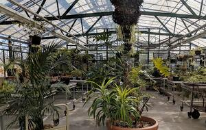 Cathedral Village Greenhouse