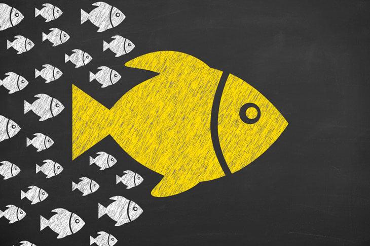Fish-swimming-chalkboard-illustration