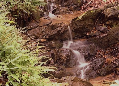 Best Senior Activities Near Glen Arm, Maryland- Cromwell Valley Park 2