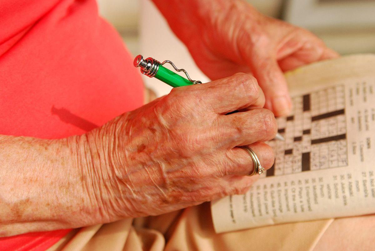 brain fitness for seniors