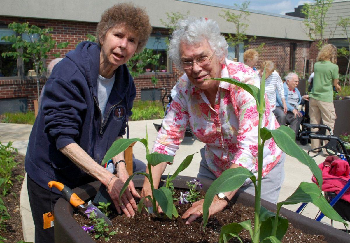 gardening at st andrews village part 2