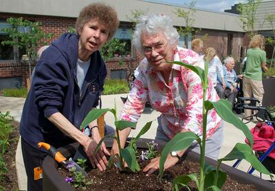 gardening at st andrews village part 2