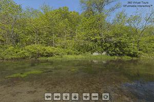 Big Spring Trout Stream