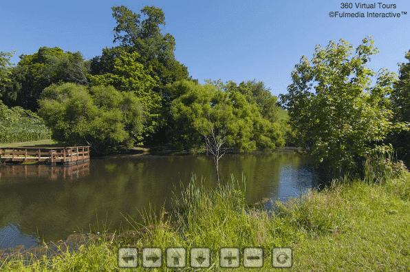 Pond | Glen Meadows Virtual Tour