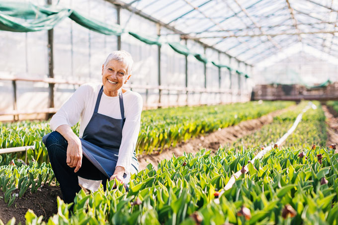 Senior-woman-working-in-greenhouse