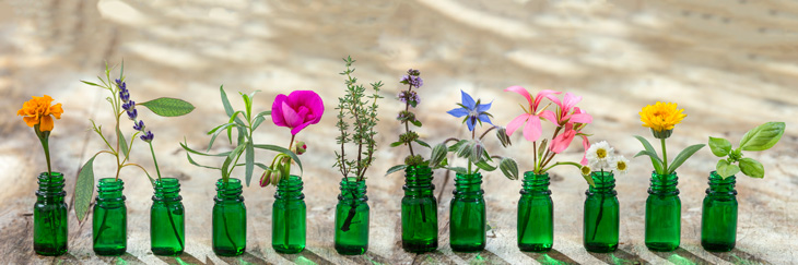 aromatherapy-as-alternative-treatment-for-pain-in-seniors