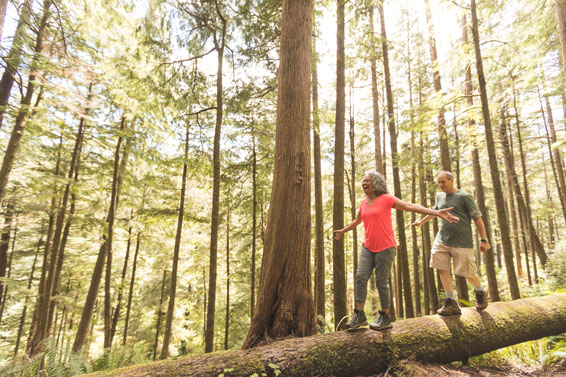 senior-couple-balancing-on-log-in-forest