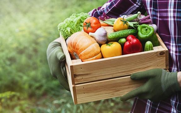 senior-dental-health-fruit-and-veggies