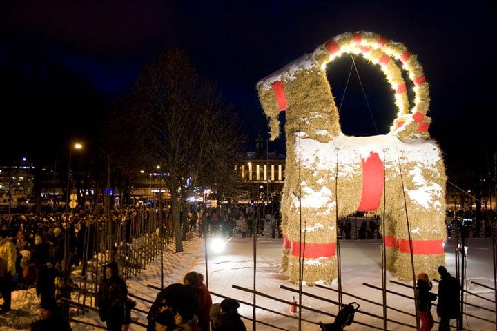 Gälve Goat Sweden