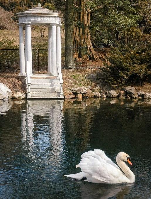 Fun Senior Activities in Philadelphia-Morris Arboretum 2