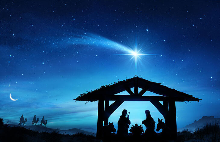 Full Nativity Scene- Reflecting on Advent