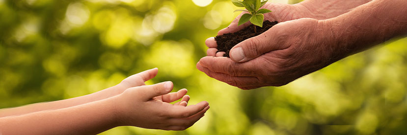 Children and Seniors: How Intergenerational Programs Bridge the Gap