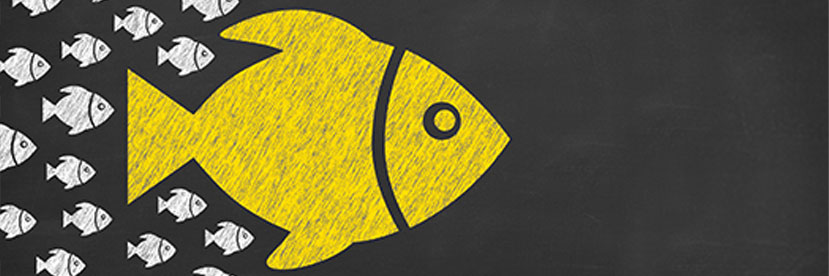 Reflections on Leadership: Under Observation