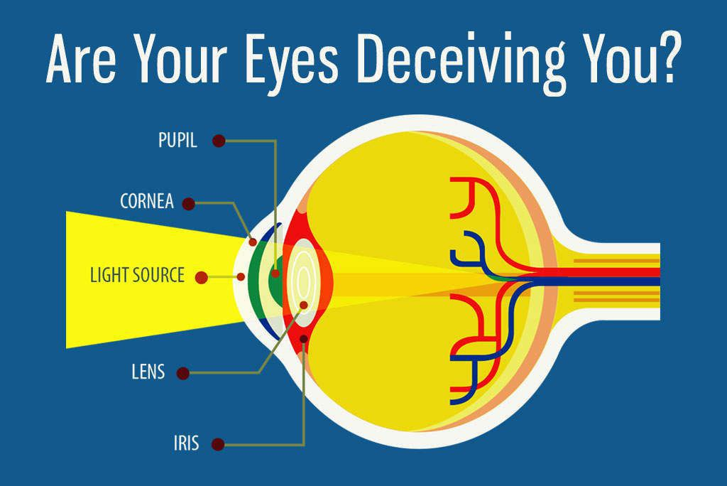 Are Your Eyes Deceiving You? Get the Facts About Cataracts [Health Infographic]