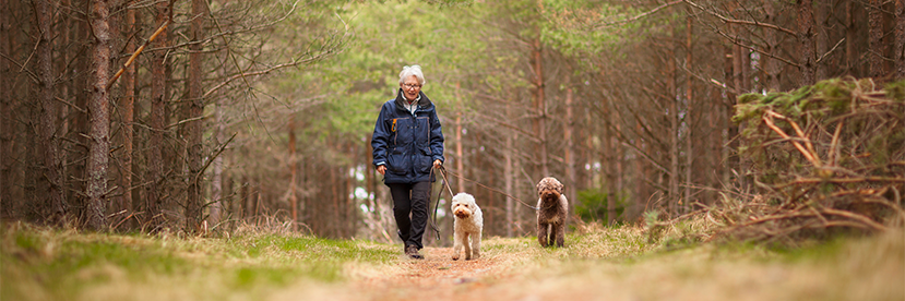 Pet Power: The Many Benefits of Pet Ownership for Seniors