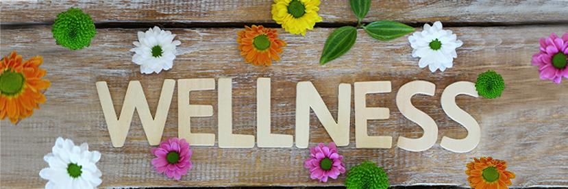 7 Wellness Classes for Seniors in Philadelphia